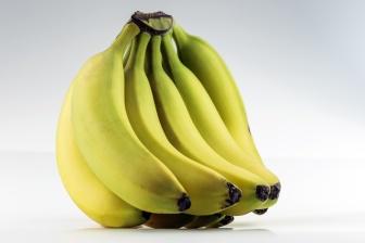 Banány obsahují na 100g přibližně 75 gramů vody, to znamená že 3/4 banánu je jen voda.