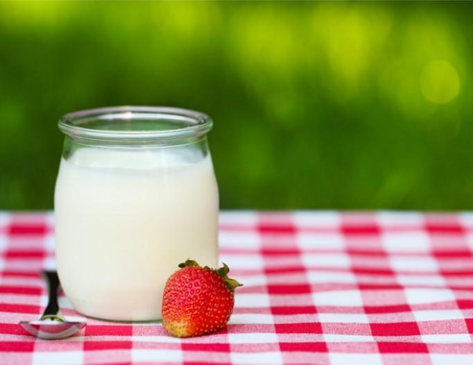 Jogurty obsahují aktivní složku – probiotické bakterie. Ty napomáhají trávení a lepšímu zdravotnímu stavu.