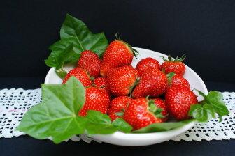 Jahody můžeme zařadit mezi ideální dietní ovoce. Jsou velmi zdravé.