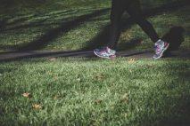 V této kalkulačce si můžete spočítat, kolik kalorií spálíte při chůzi. Chození je ideální aktivita, abyste začali hubnout. Chodit může každý, i ten kdo má nadváhu. Abyste při chození spalovali především tuky, je potřeba chodit na delší procházky svižným tempem.